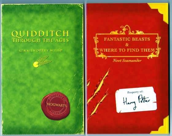 Quidditch Through the Ages-Fantastic Beasts & Where to Find Them