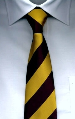 Harry Potter. Hogwarts School tie! As seen in the movies!